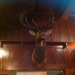 Elk mounts