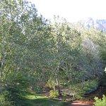 Photo de The Inn Above Oak Creek