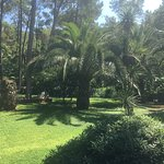 Landscape - Marmaris Bay Resort by MP Hotels Photo