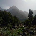 Photo of Riad Oussagou