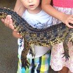 Crocodile Park Foto