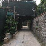 Photo of Il Casale Sorrento