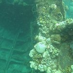 Photo de Sunken Japanese Wrecks