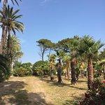 Foto de Camping Malvarrosa de Corinto