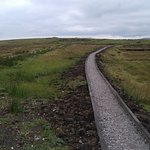 narrow trail through the transmitter.-area