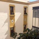 El patio interno, un hotel con estilo colonial y cálido...