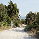 De toegangsweg naar Antico Borgo Tignano.