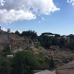 Palatine view