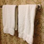 Disgusting towels