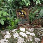 Photo of Xaman Ha Aviary