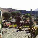 Foto di Jardin de Cactus Restaurant