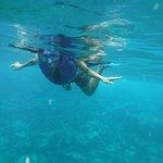 Snorkeling in K-Bay