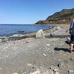 Photo de Auberge Festive Sea Shack