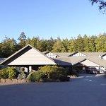 Jamie's Rainforest Inn Foto