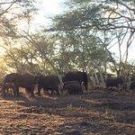 Rhino River Lodge Foto