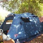 Camping Ciauli Foto