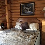 Beluga Lookout Lodge & RV Park-bild