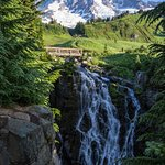 10 minute walk along the Skyline trail to this view of Myrtle Falls & Mt Rainier