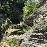 Robert Treman State Park Foto