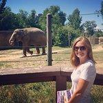 Denver Zoo Foto