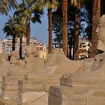 Avenue of Sphinxes Foto