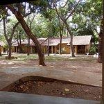 Foto di Habarana Village by Cinnamon