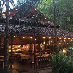 Photo de Fern Resort