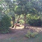 Jardin et salon extérieur