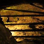 Photo de Fromagerie Papillon Caves
