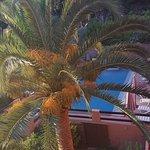 Photo de Hotel Corsica