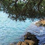 Photo de Recer De La Mar