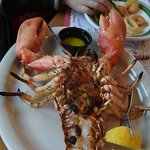 Lobster - Very good, and for only $ 28