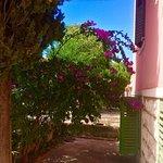 Photo of Beach Hostel