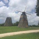 Betty's Hope sugar plantation.