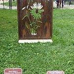 Photo de South Mountain Reservation