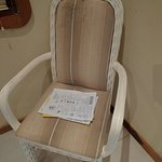 Mold covered chair