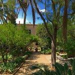 Garden Finca Raims