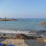 Пляж, горы водорослей