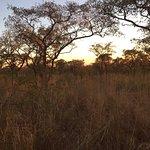 Nkambeni Safari Camp Foto