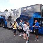 Ônibus da Florida Dolphin Tours para o Kennedy Space Center