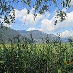 Nature reserve beside Lake Zell
