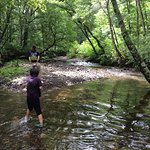 浅い川なので小さい子供が遊べます!