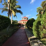 Photo de IBEROSTAR Playa Alameda Hotel