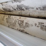 Window edge, black mold