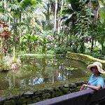 Hawaii Tropical Botanical Garden Foto