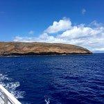 Photo de Pacific Whale Foundation