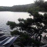 20160819_192032_large.jpg