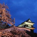 薄明の臼杵城