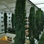 Foto de Courtyard Prague Airport