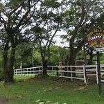 Rincon de la Vieja Lodge Photo